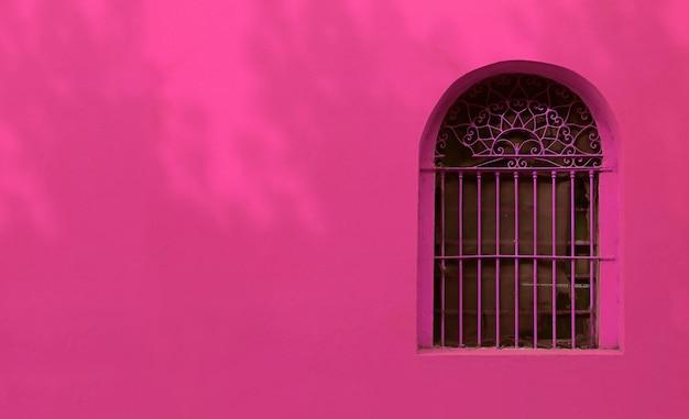 Finestra vintage in ferro battuto rosa caldo sulla parete colorata rosa francese con le ombre del fogliame