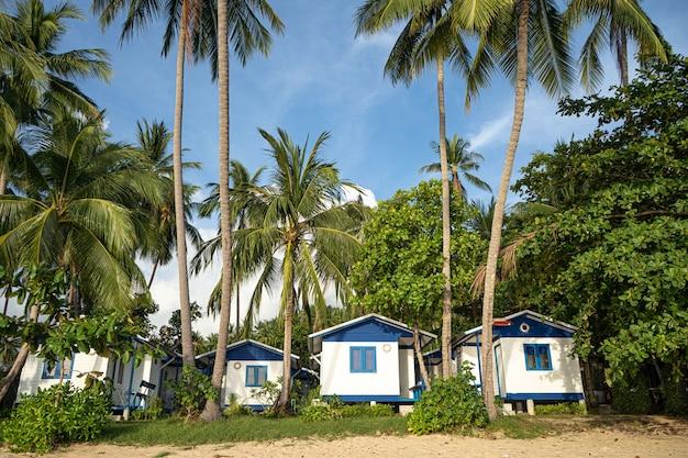 Casa sulla spiaggia vicino alle palme con vista sulla spiaggia di sabbia