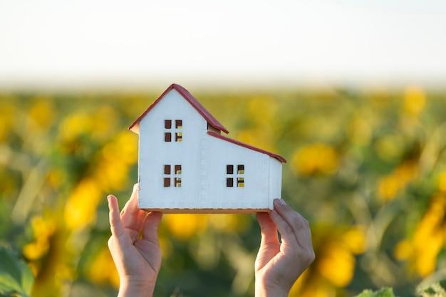 Modello di casa in bambino sul campo giallo. casa ecologica. serre