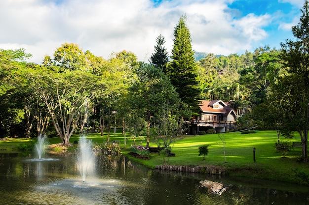 Pendio della valle verde del resort della casa nel giardino morbido