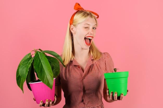 Pianta d'appartamento, ragazza ammiccante con fiore in vaso, giardiniera donna con piante in vaso.