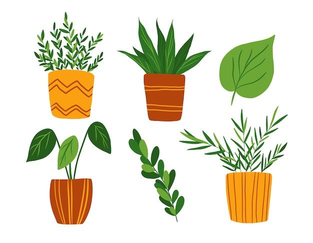 Insieme di arte di clip delle piante d'appartamento isolato su priorità bassa bianca. disegnato a mano in una collezione di fiori in vaso stile piatto. elementi di design di piante da appartamento.