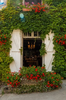 Case piene di foglie verdi nel borgo medievale di rochefort-en-terre, dipartimento del morbihan nella regione della bretagna. francia