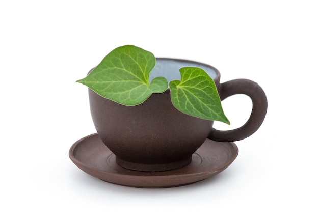 Houttuynia cordata o plu kaow foglie verdi e tè isolato su bianco.
