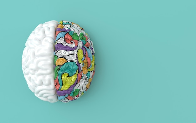 Cervello umano, mente creativa