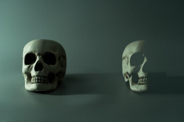 Testa del cranio morto umano. sfondo festa di halloween