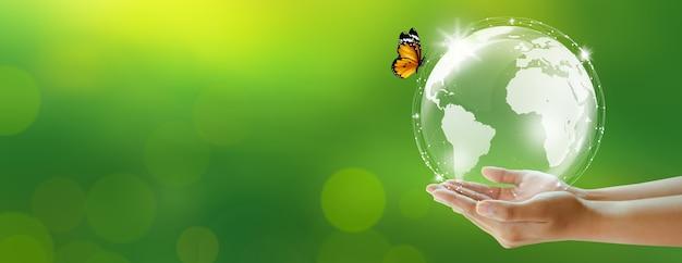 Terra e farfalla della tenuta umana sopra fondo verde della sfuocatura. ambiente mondiale e concetto verde. copia spazio.