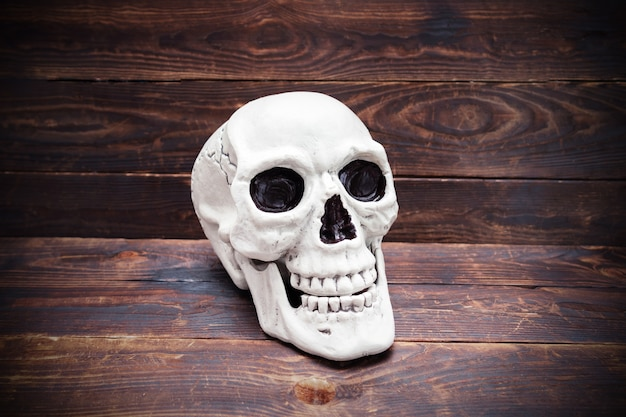 Cranio umano sulla superficie della plancia di legno scuro.