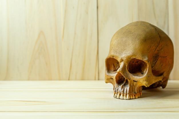 Cranio umano su legno per contenuto corpo umano o halloween.
