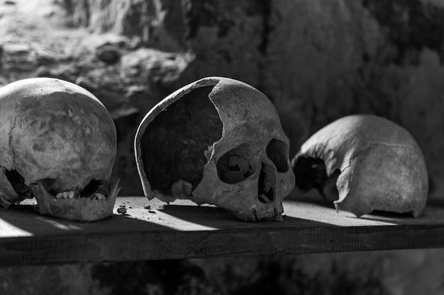 Teschi umani su una mensola di legno in una cripta di pietra