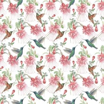 Illustrazione disegnata a mano dell'acquerello degli uccelli dei fiori fucsia e dei colibrì