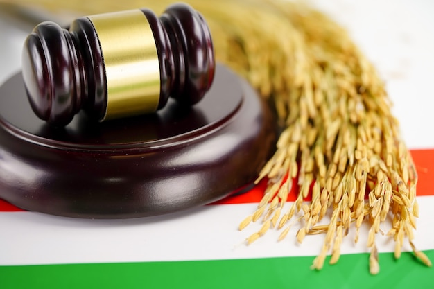 Paese di bandiera dell'ungheria con martelletto per avvocato giudice.