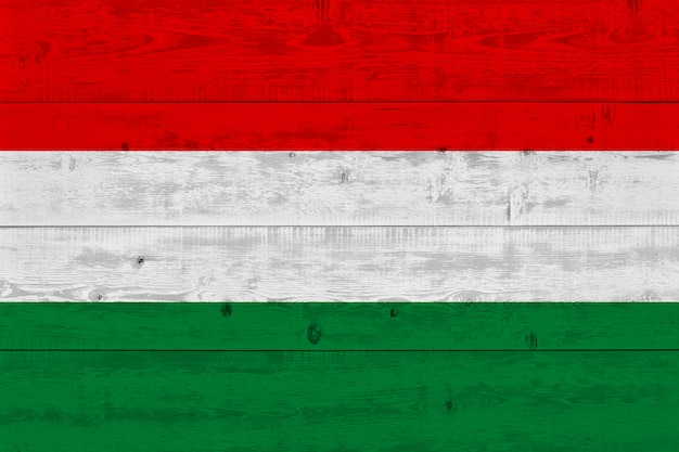 Bandiera dell'ungheria dipinta sulla vecchia plancia di legno
