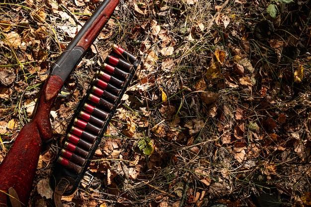 Fucile da caccia e cartucce nella foresta di autunno