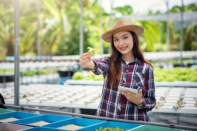 Fattoria di ortaggi idroponici. bello contadino asiatico studiando la coltivazione idroponica e l'analisi. concetto di coltivazione di ortaggi biologici e alimenti naturali.