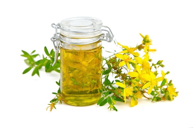 Hypericum perforatum o olio di iperico con fiori e foglie isolati su bianco