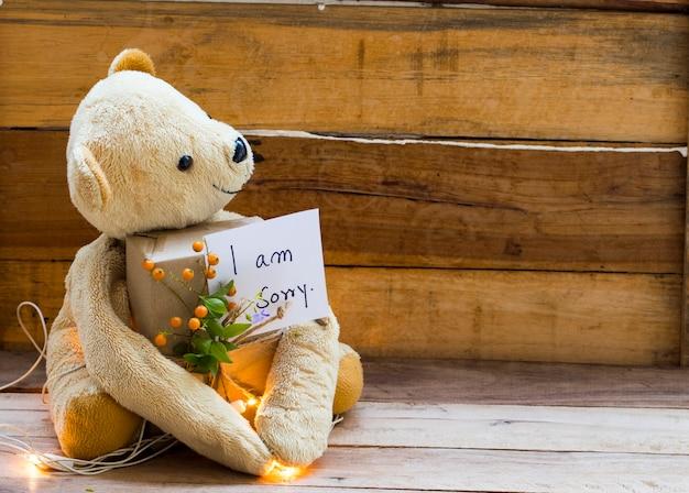 Mi dispiace la grafia della scheda del messaggio con la casella della holding dell'orsacchiotto