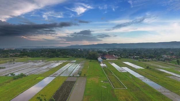 Immagine del bellissimo campo di riso terrazzato nella stagione dell'acqua e irrigazione da drone vista dall'alto della risaia di riso in java indonesia
