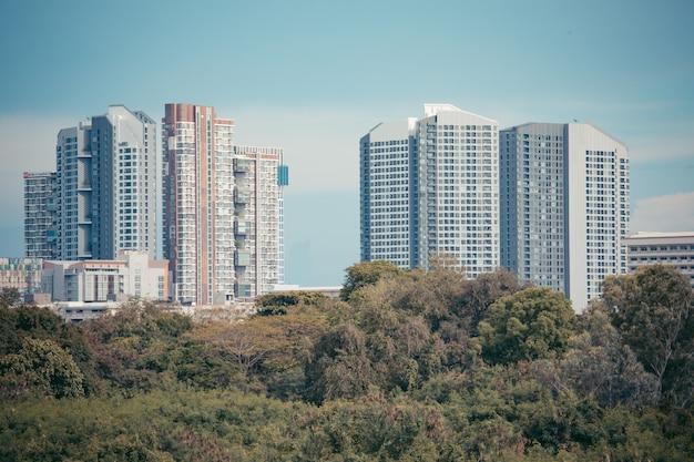 Immagine del condominio nel pomeriggio con la foresta sul lato anteriore