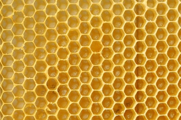 Immagine di uno sfondo vuoto a nido d'ape