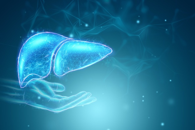 Immagine di un ologramma di una mano e di un fegato distesi. concetto di affari di trattamento dell'epatite umana, donazione, prevenzione delle malattie, diagnosi online. rendering 3d, illustrazione 3d.