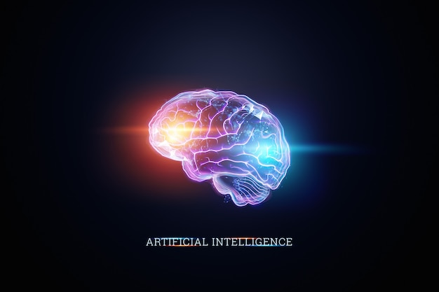 L'immagine del cervello umano