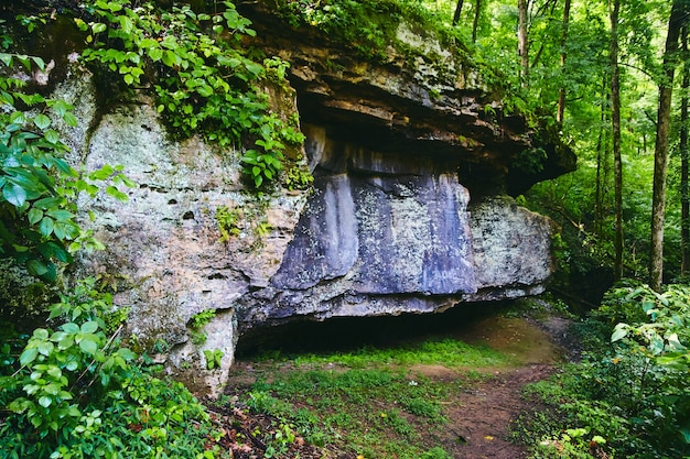 Immagine di grandi formazioni rocciose nel sentiero del parco con una foresta lussureggiante verde