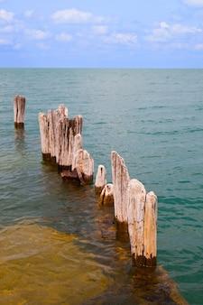Immagine di legno bianco nautico che spunta da un lago immobile
