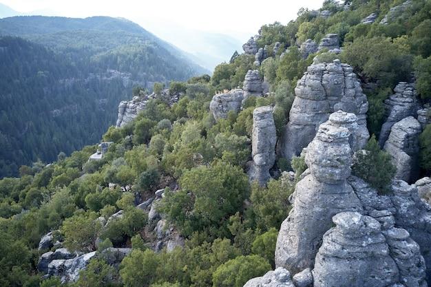 Incredibili formazioni rocciose grigie. vista panoramica del paesaggio di scogliere rocciose con alberi verdi circondati da montagne