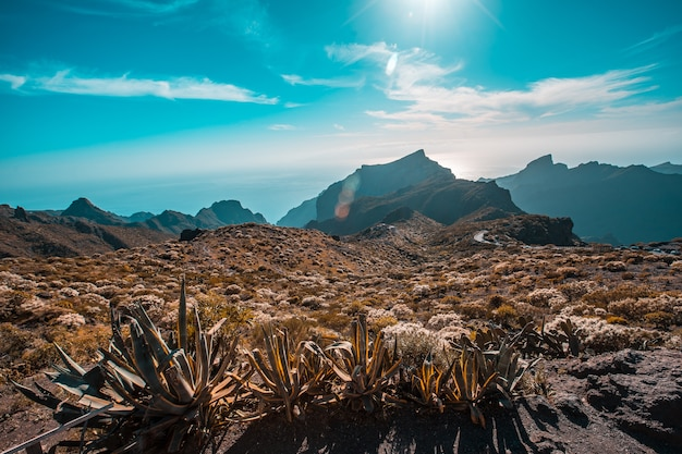 Incredibile paesaggio dal punto di vista di masca sull'isola di tenerife, isole canarie. spagna