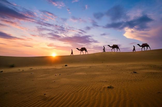 Cammellieri indiani cammelliere con sagome di cammello in dune sul tramonto. jaisalmer, rajasthan, india
