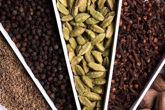 Spezie colorate indiane in un contenitore di design a forma di raggi solari o sunburst bianco, messa a fuoco selettiva.