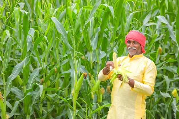 Coltivatore indiano al campo di mais