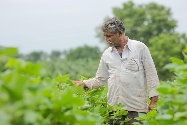 Contadino indiano in fattoria di cotone