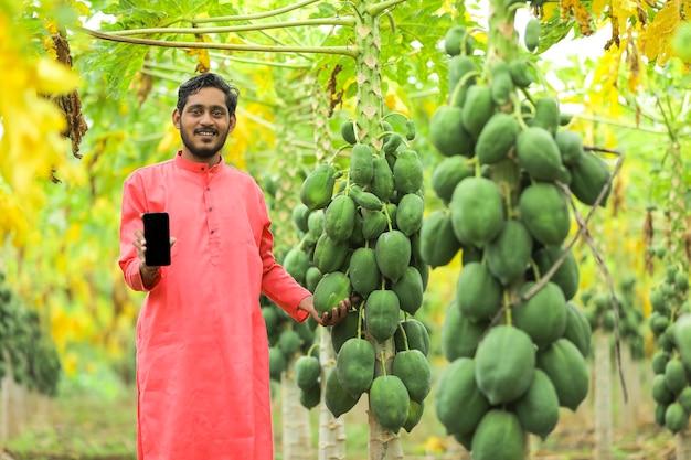 Coltivatore indiano in costume tradizionale sul campo di papaia