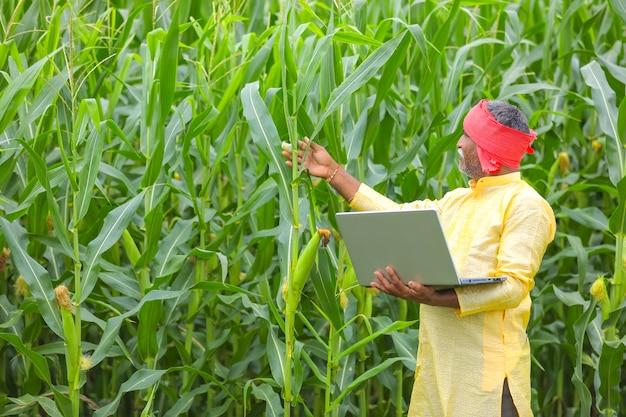 Coltivatore indiano che utilizza computer portatile al campo di mais