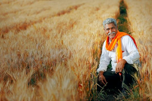 Coltivatore indiano nel campo di grano