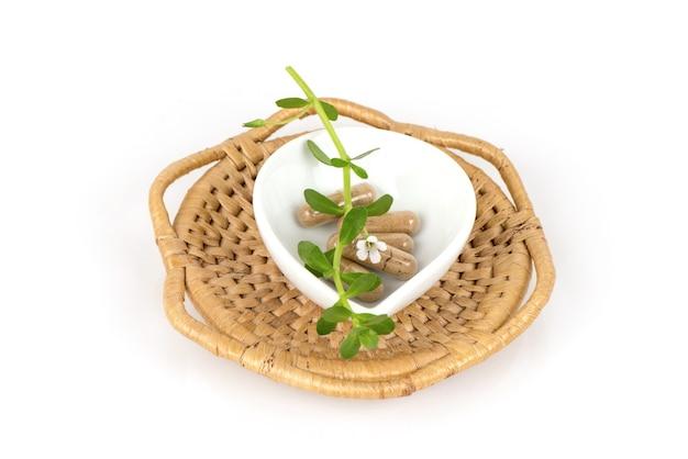 Pennywort indiano o brahmi e polvere in capsule isolati su sfondo bianco.