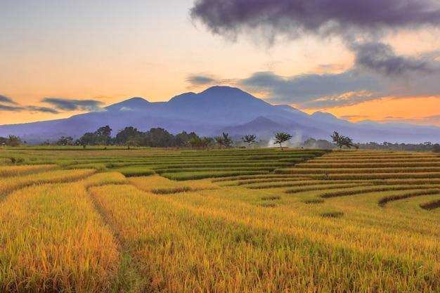 Vista del paesaggio indonesiano con montagne e cielo dell'alba al mattino in un piccolo villaggio di risaie nel nord bengkulu