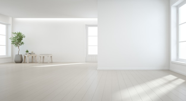 Pianta da interno sul pavimento di legno