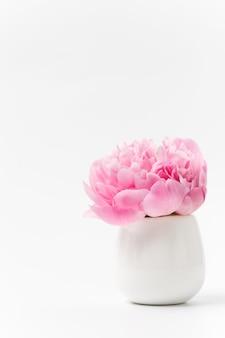 Innocenza e delicatezza concetto minimalista di san valentino, un unico fiore di peonia rosa in un piccolo vaso sulla superficie bianca, concetto di sensualità e femminilità