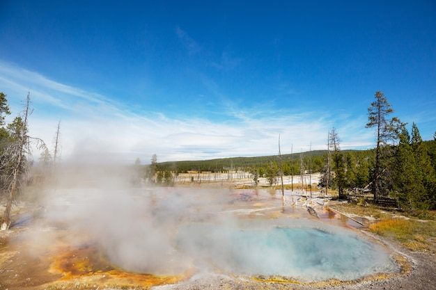 Suggestivo paesaggio naturale. piscine e campi di geyser nel parco nazionale di yellowstone, usa.