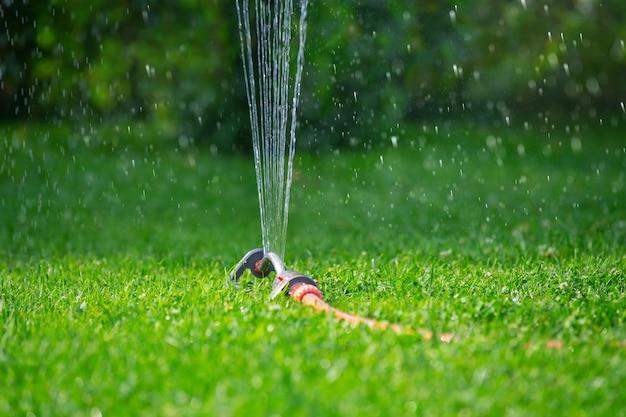 Impianto per l'irrigazione a pioggia del prato estivo