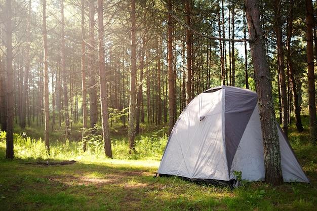 Tenda turistica installata in natura nella foresta. turismo domestico, vacanze estive attive, avventure in famiglia. ecoturismo, distanza sociale. copia spazio