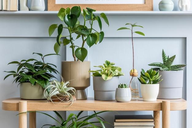 Interior design di soggiorno con consolle in legno, composizione di piante