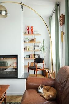 Interior design di interni eleganti soggiorno con mobili vintage, libreria home office, camino, lampada e decorazione