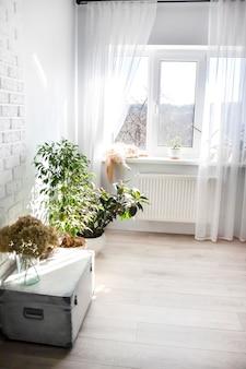 L'interno del soggiorno in colori chiari. gatto lanuginoso bianco-rosso che dorme sul davanzale della finestra