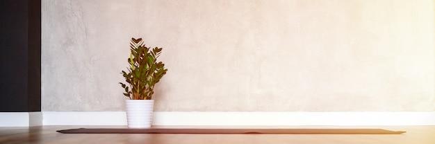 L'interno della sala studio per lo yoga, un tappetino di gomma e una pianta zamioculcas sul legno