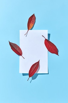 Carta di invito dal foglio di carta bianco vuoto e quattro foglie di autunno colorate di rosso con ombre dure e spazio di copia. lay piatto.