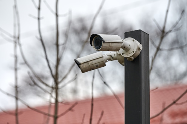 Telecamera di sicurezza cctv ip su palo, cielo grigio, alberi e tetto, paesaggio urbano